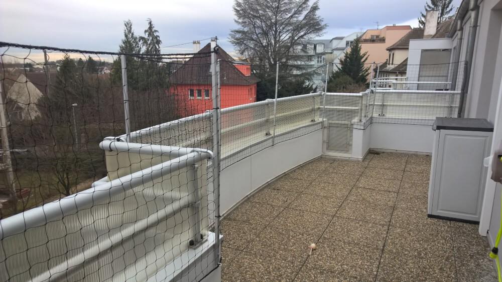 Filet anti saut pour chat sur terrasse