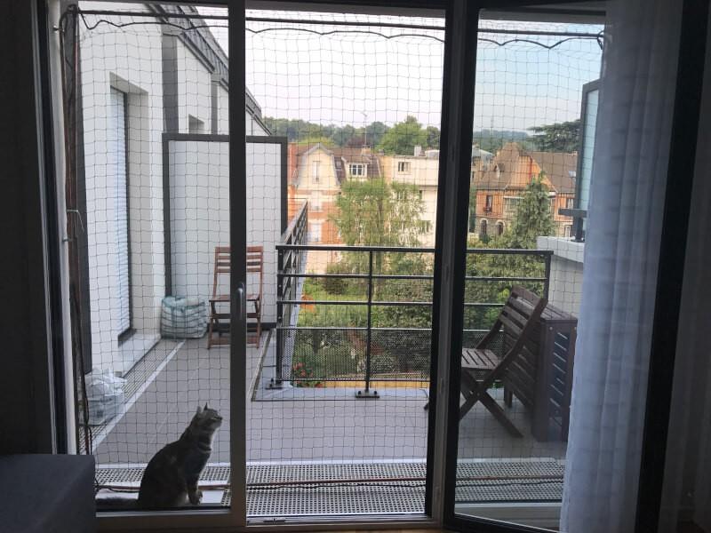 Sécuriser une porte fenêtre avec un filet de protection pour chat