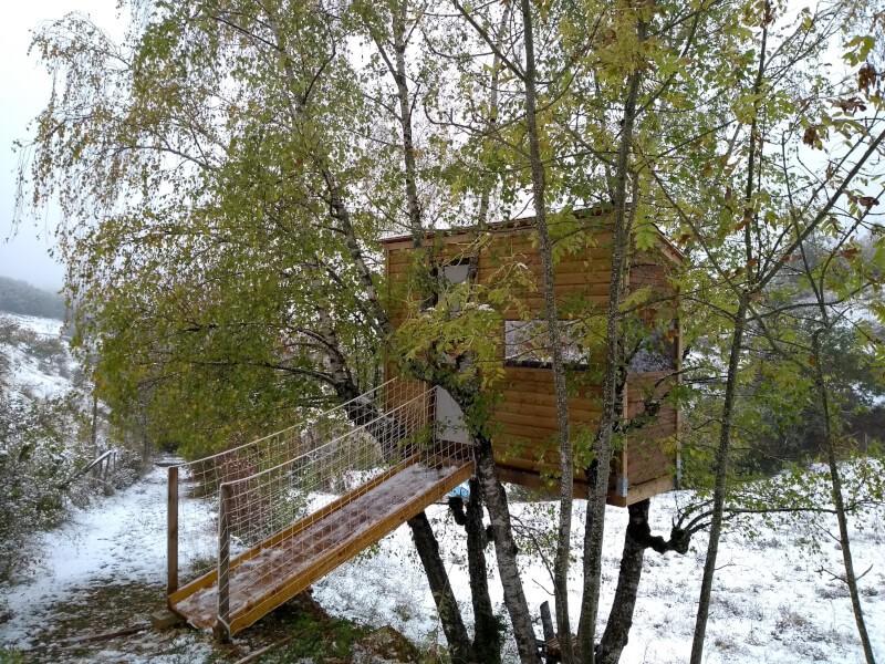 Passerelle sécurisée pour cabane perchée dans les arbres