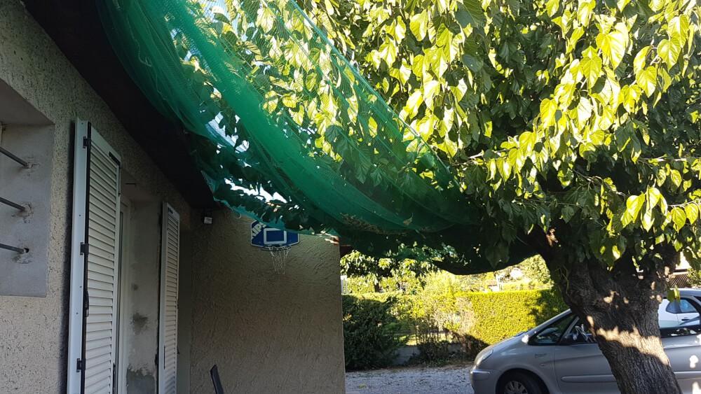 Filet pour arbres fruitiers, vignes et potagers - Mailles 2 x 6 mm - 60 g/m² envoyé par un client