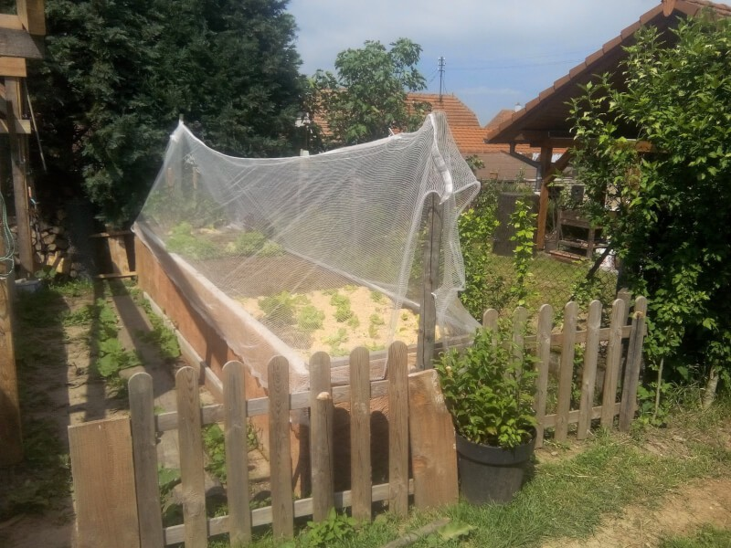 Filet anti-grêle pour protéger des bacs de jardin