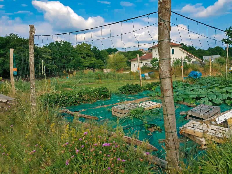 Filet de clôture pour jardin