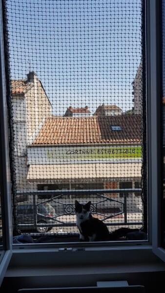 Filet de protection chats pour fenêtre