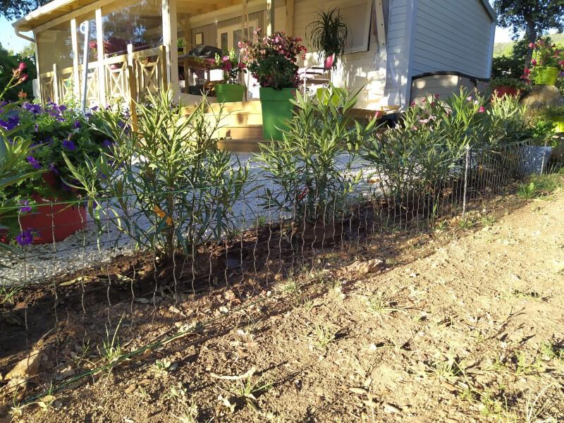Filet polyéthylène délimitation jardin