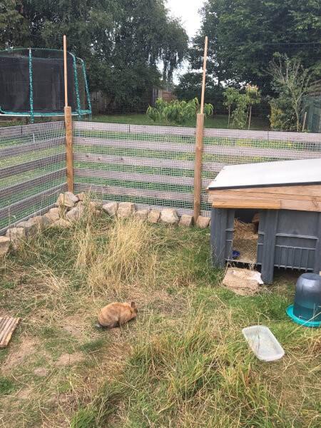 Filet enclos à lapins