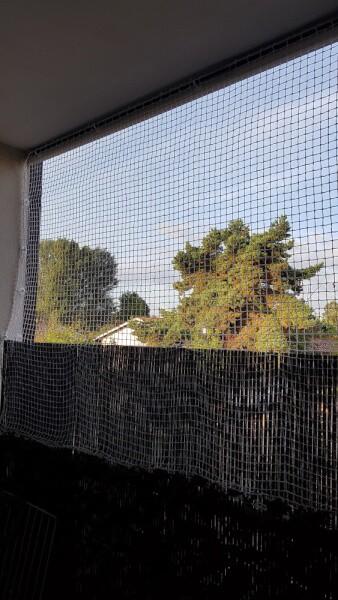 Filet de protection pour chats pour ouvrir ses fenêtres
