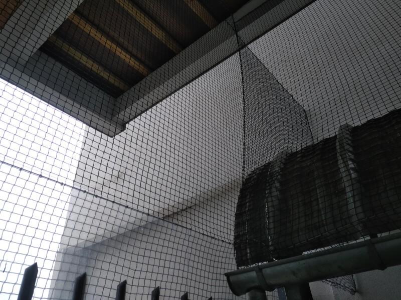 Installation filet de volière