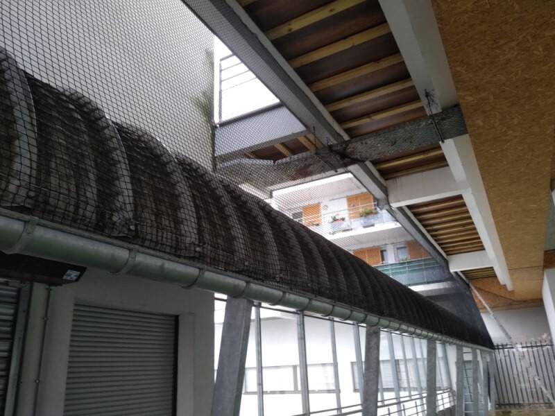 Filet de volière - Mailles 25 x 25 mm pour immeuble