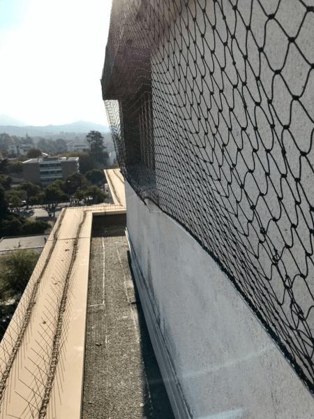 Filet anti pigeons et goélands sur toit d'un immeuble