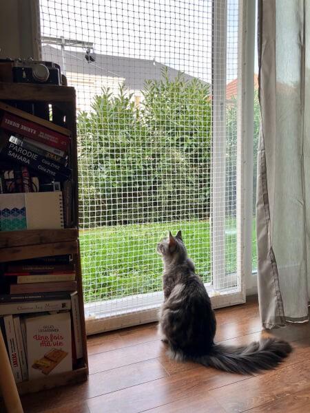 Filet de protection pour fenêtre anti-evasion pour chats