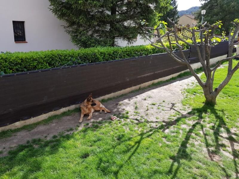 Filet brise-vue pour jardin chien