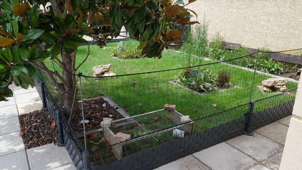 Filet de protection pour enclos à tortues
