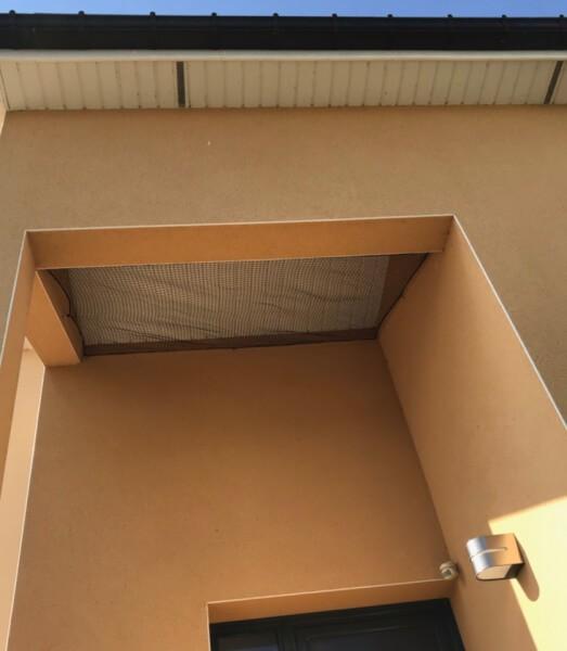 Filet anti oiseaux installé sous toiture