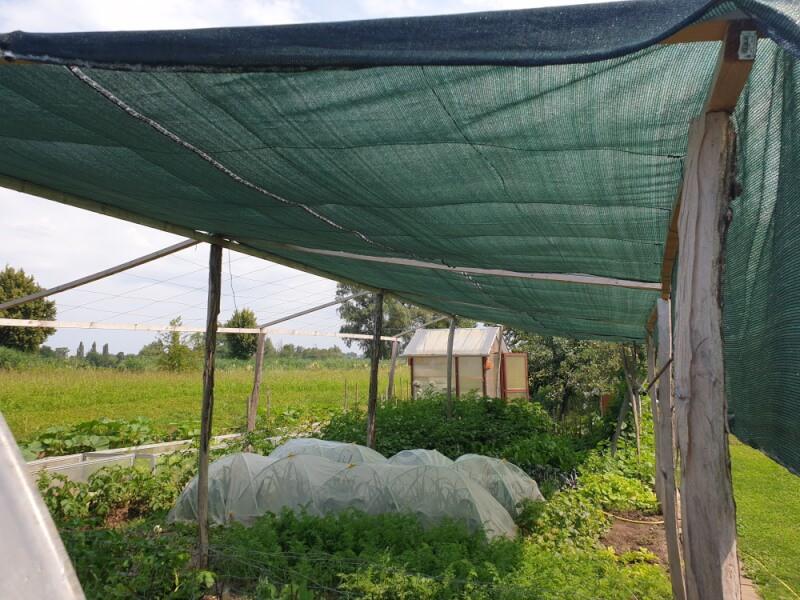 Filet d'ombrage pour protéger des plantations