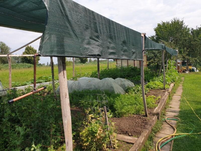 Filet d'ombrage pour l'agriculture