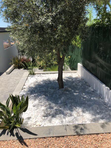 Filet anti-feuilles pour faciliter le ramassage des feuilles sous un arbre