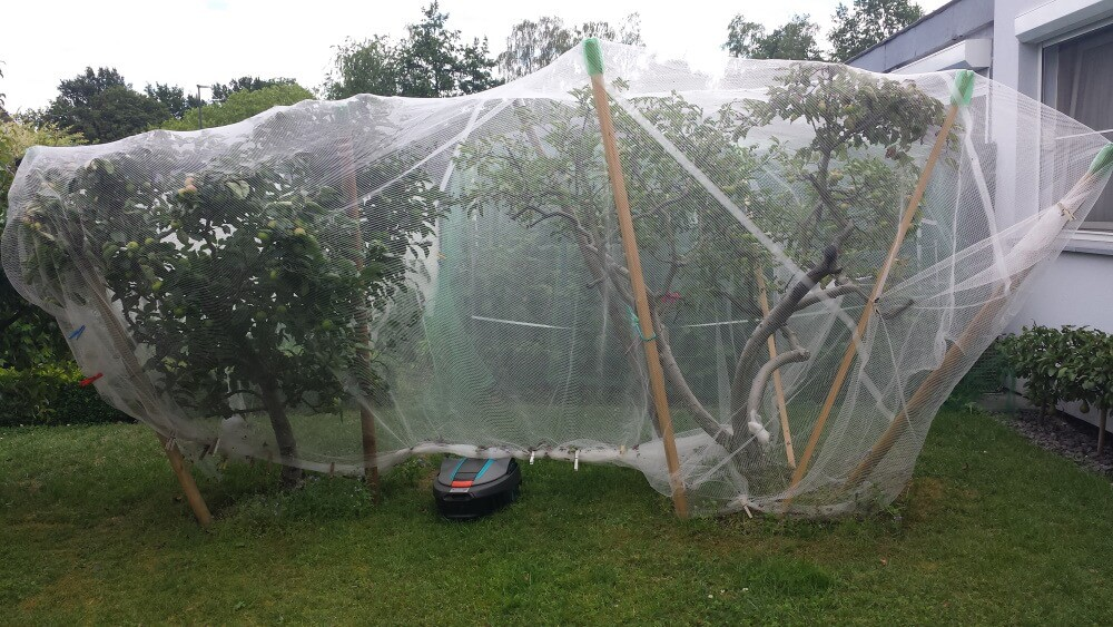 Filet pour arbres fruitiers protège des pommiers dans un jardin