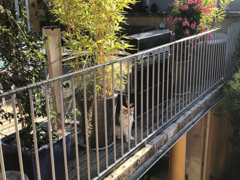 - Filet de protection pour chat installé sur un balcon