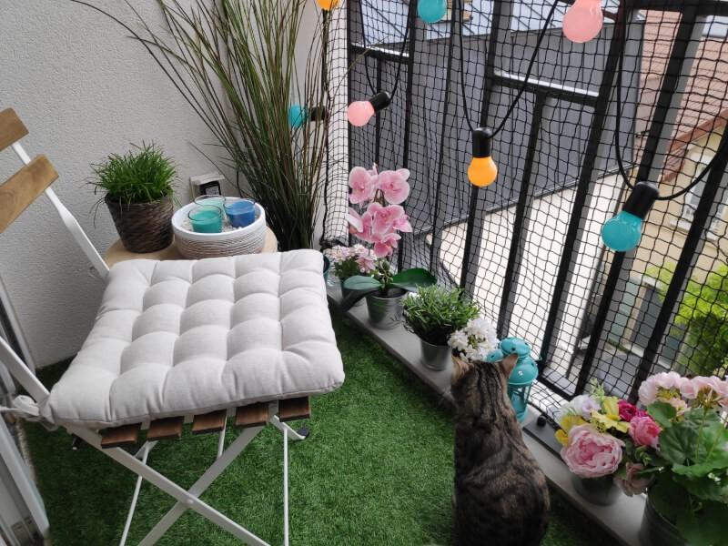 balcon, bien sécurisé pour nos chats grâce à un filet de protection chats