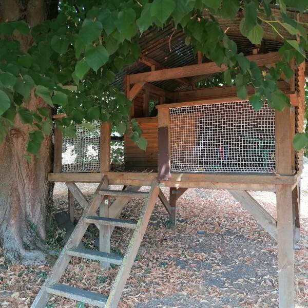Filets de sécurité esthétiques pour la cabane des enfants