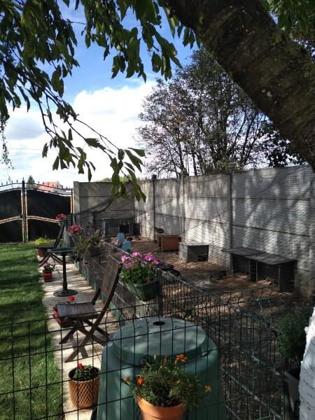 Réalisation d'un parc a sauvagine à la maison avec un filet de volière