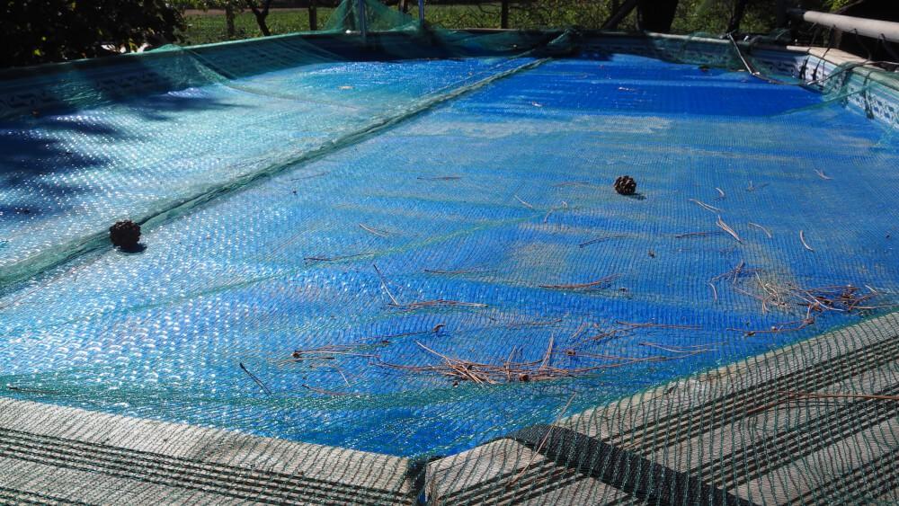 Filet anti salissures installé sur piscine