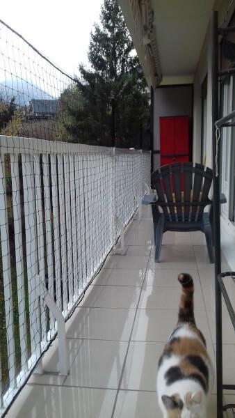 Filet de protection pour chat installé sur rambarde balcon