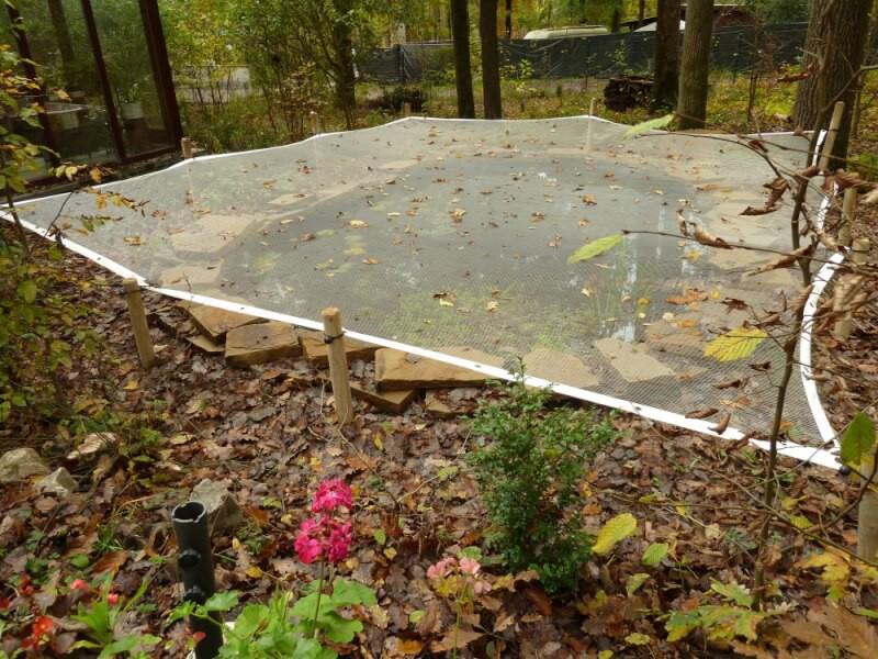 Filet anti-feuilles tendu sur un très grand bassin