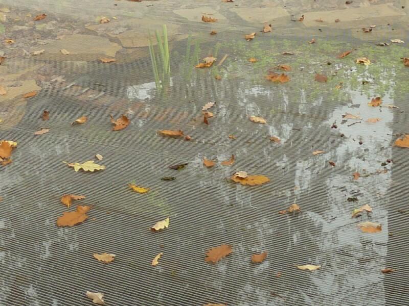 Filet anti-feuilles sur-mesure pour bassin retient toutes les feuilles