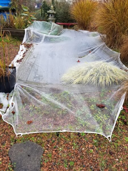 Filet anti-feuilles protection bassin à carpes Koï