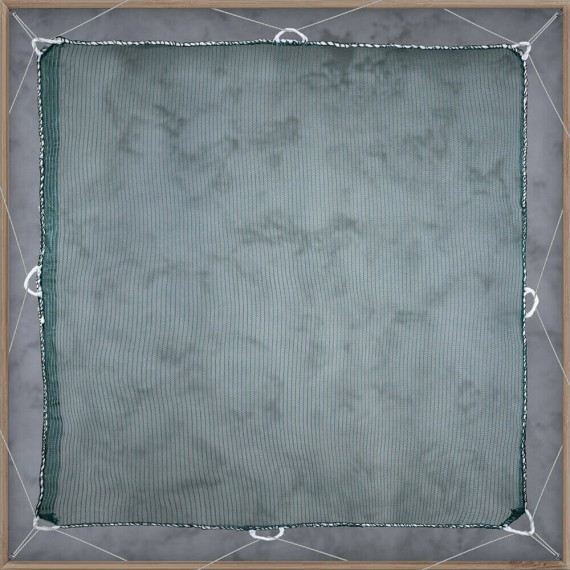 Filets anti-feuilles - mailles 2 x 6 mm - 60g/m²
