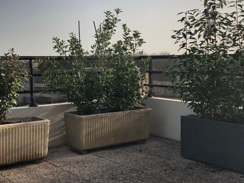 Filet brise-vent - Filtration moyenne pour terrasse