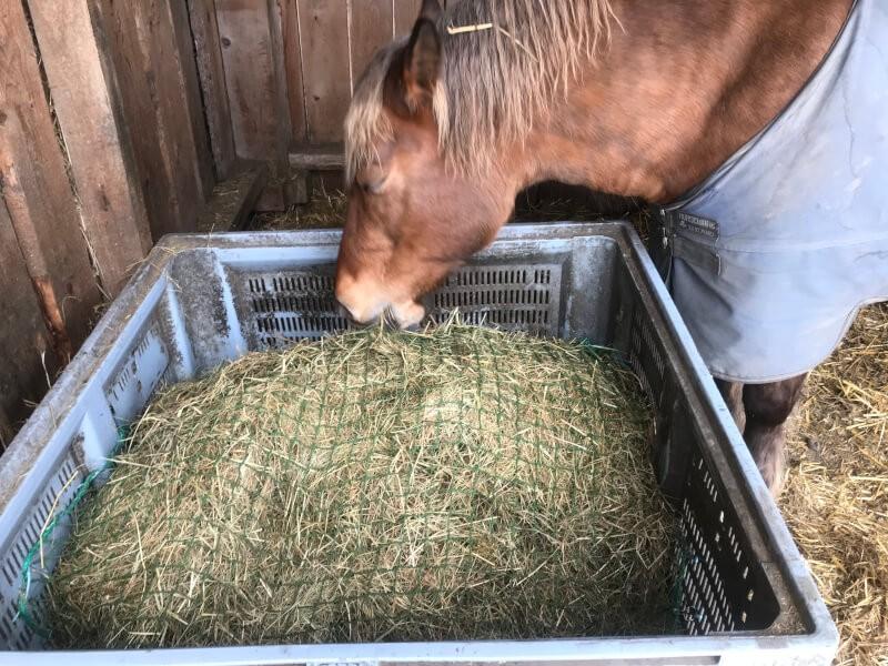 Filet pour mangeoire à chevaux