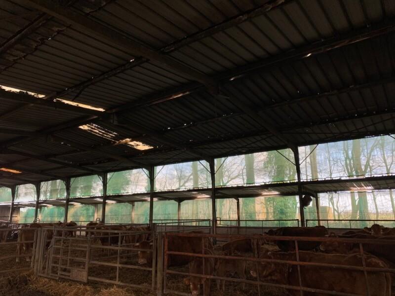 Filet brise-vent bâtiment agricole