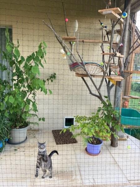 Filet pour chatière extérieure