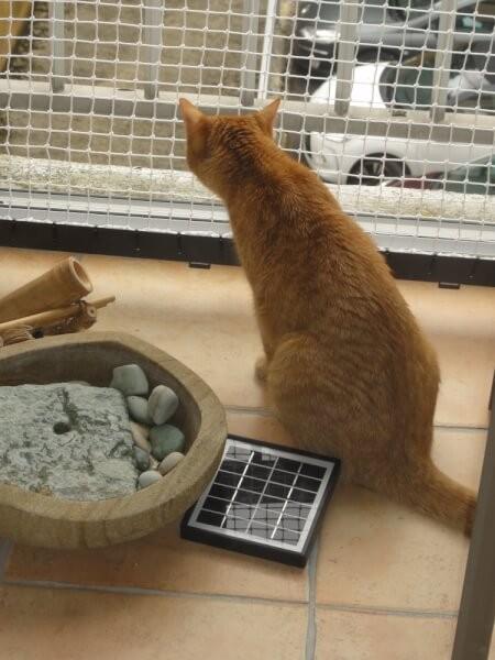 Filet de protection pour chats pour sécuriser une balcon