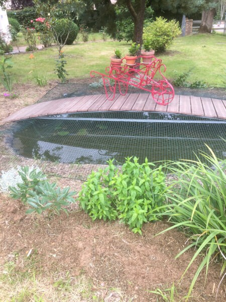 Filet de protection pour chats installé sur un bassin à poissons