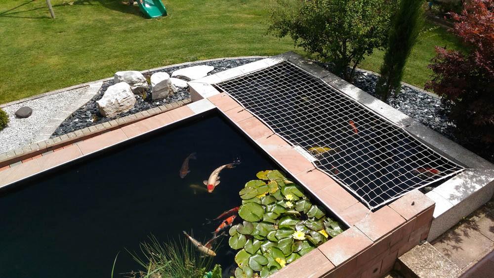 Filet de protection pour bassin à poissons