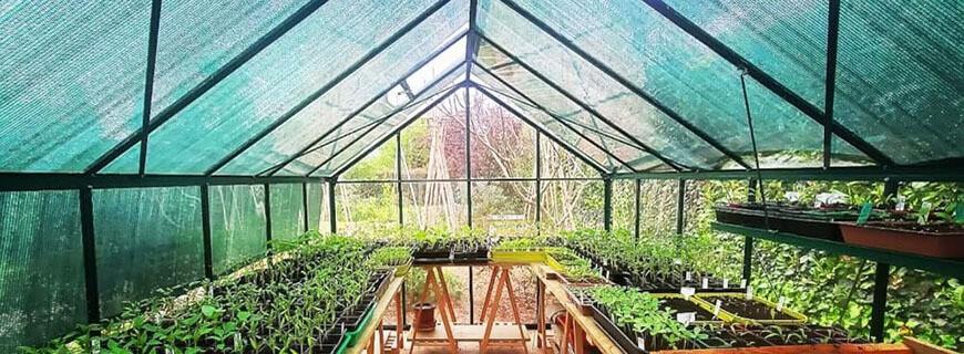 Filets d'ombrage